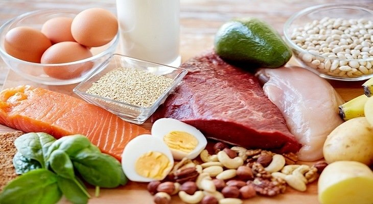 A Beginner's Guide to The High Fat Diet